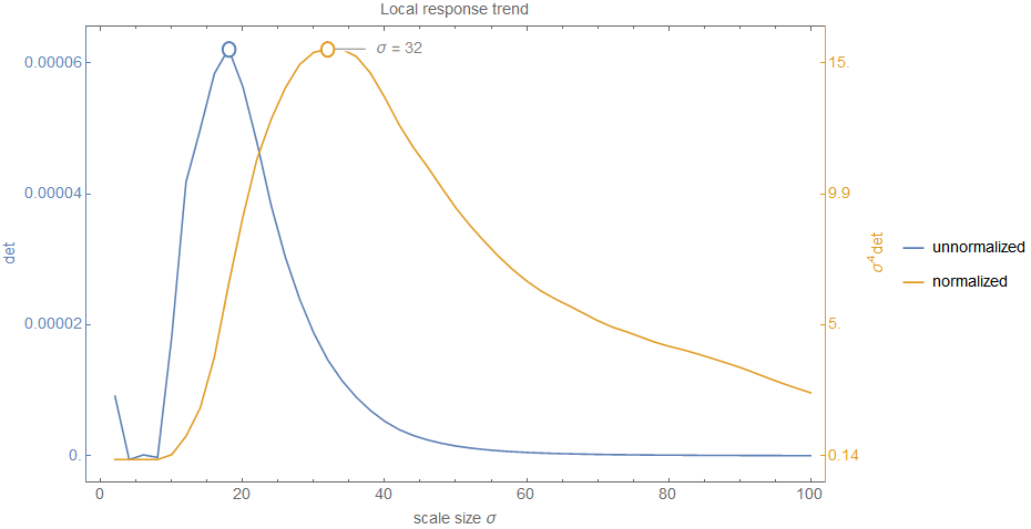 Determinant response over different scale levels with and without scale normalization